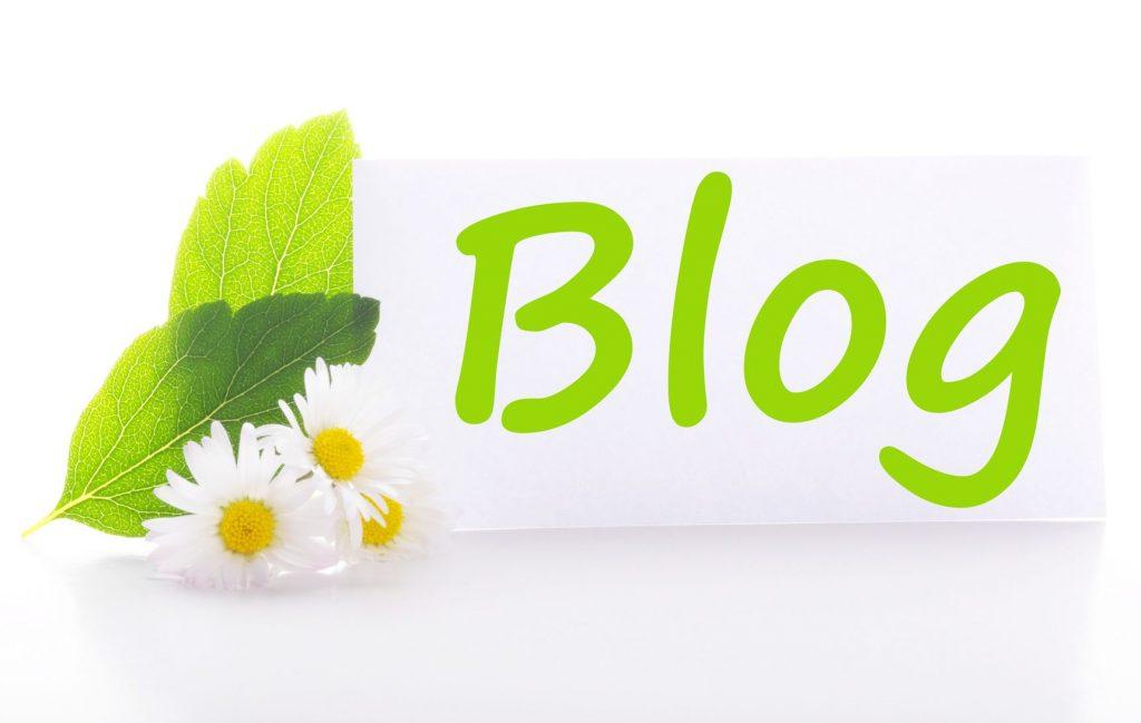 ブログ更新しました!
